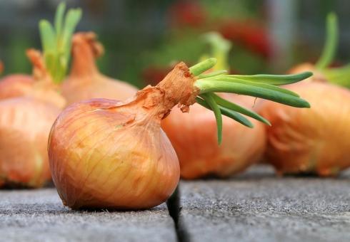 НаБрянщине занеделю подорожали капуста, картофель ибензин