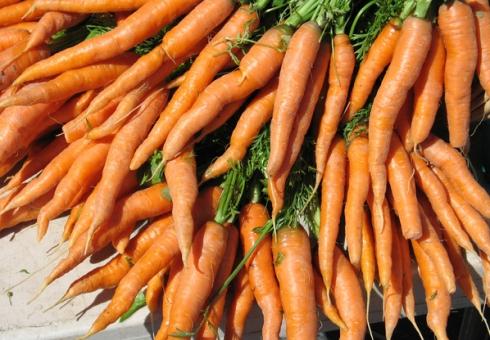 ВКазахстан непустили 19 тонн моркови изСаратовской области