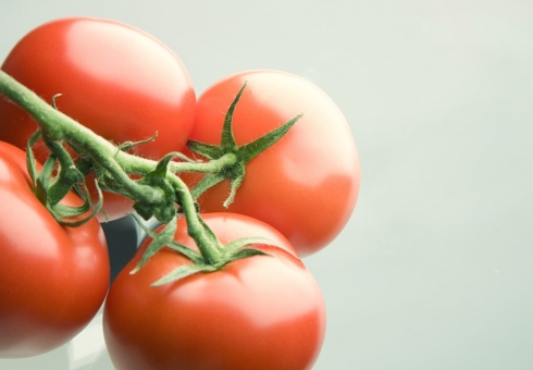 Россельхознадзор уничтожил вСаратове неменее  тонны томатов