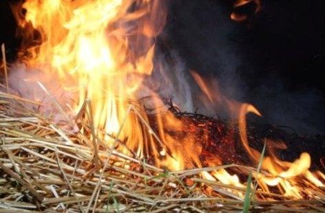 Валерий Радаев опожароопасном периоде: «Мониторинг ситуации влесах должен быть круглосуточным»