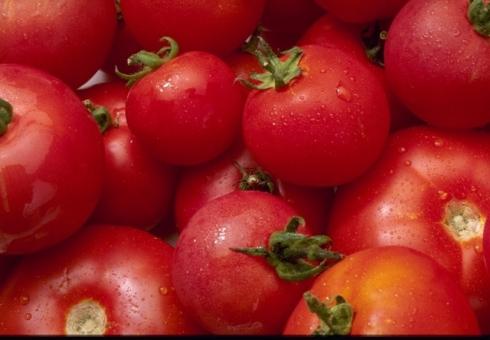 Насаратовском рынке уничтожена тонна турецких томатов