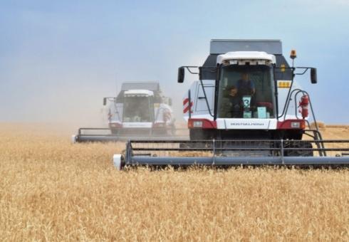 43,7 млн тонн урожая собрали аграрии Украины,— ГСС